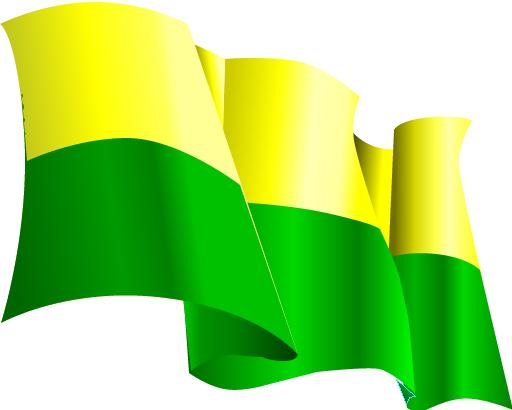 bandera_ens